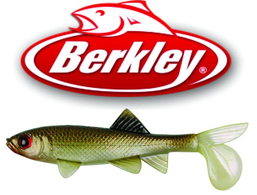 Sick Fish, Havoc, Berkley, Fishing,