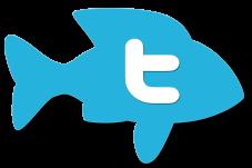 twitter-fish-logo-1200x800