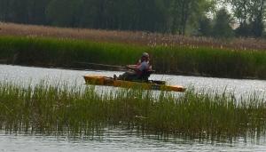 Long Point Bay, Kayak Fishing, BAER Fishing Adventures, Hobie, Pro Angler 14, Old Cut, Lake Erie, Norfolk County